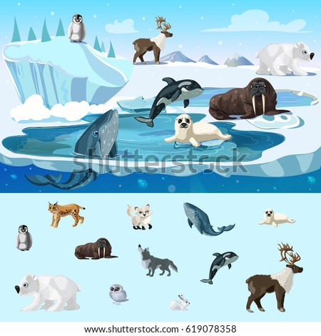 Colorful arctic wildlife concept with different north animals in cartoon style vector illustration