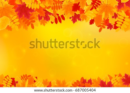 colorful autumn leaves on