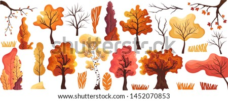 colorful autumn trees flat set