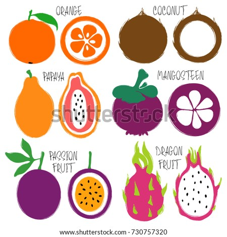 Colorful brush grunge fruits icons set: orange, coconut, papaya, mangosteen, passion fruit and dragon fruit.