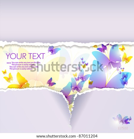Colorful butterfly background. Torn paper