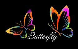Colorful Butterfly. Multicolored abstract butterfly logo. Vector