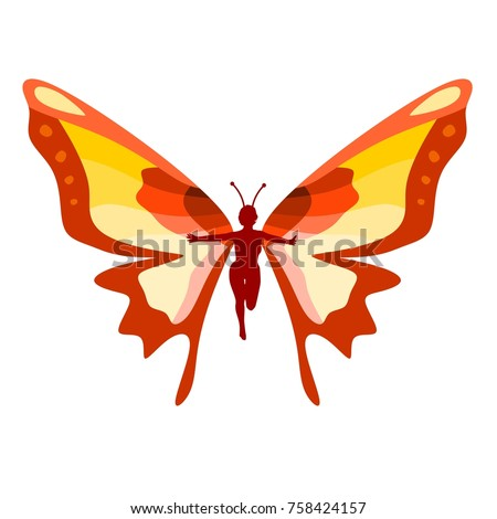 colorful butterfly with the