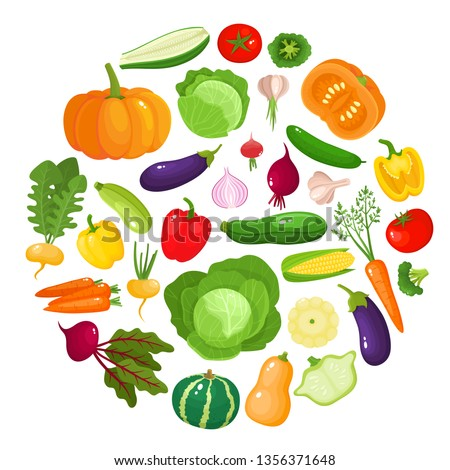 Colorful cartoon vegetables icons in round isolated on white. Vector illustration of fresh organic vegetable banner used for magazine, book, poster, card, menu cover, web pages. #1356371648