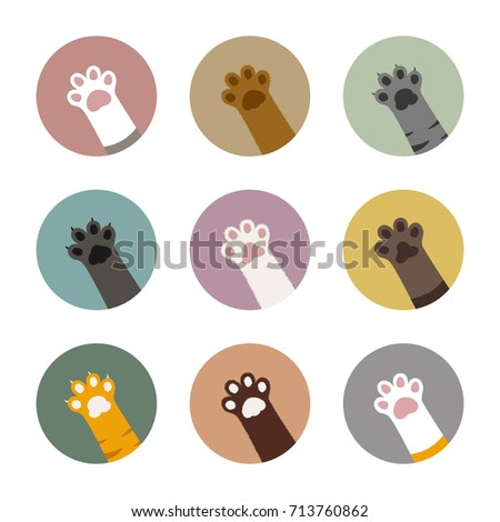 colorful cat paws in circles