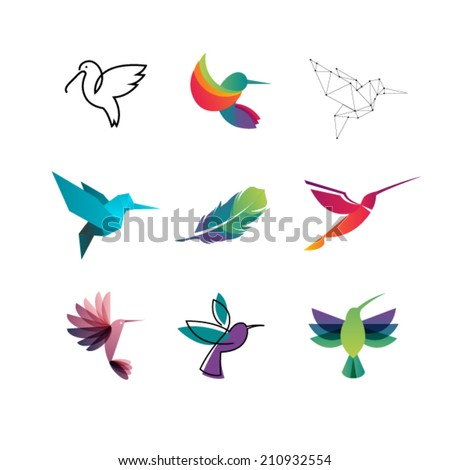 Colorful Colibri. Hummingbirds