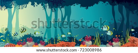 colorful coral reef with school