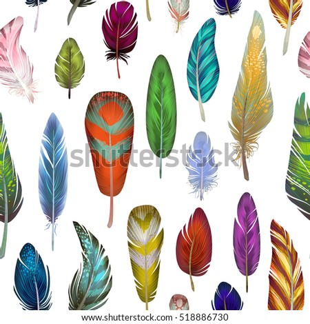 colorful detailed bird feathers