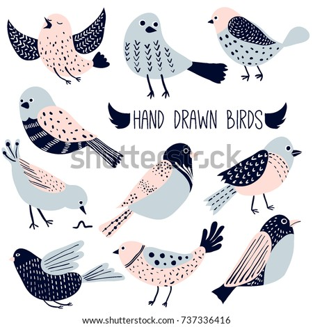Colorful doodle bird collection. Collection of cute hand drawn birds
