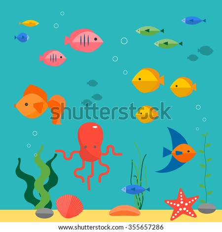 colorful fish in the water