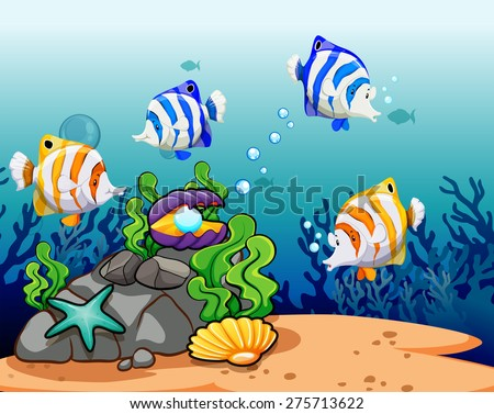 colorful fish with reefs under