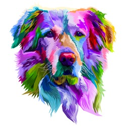 colorful golden retriever dog on pop art style. vector illustration.