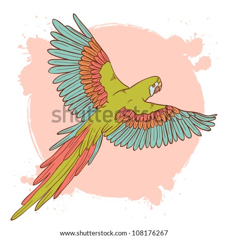 Colorful hand drawn ara parrot flying isolated on a grunge background
