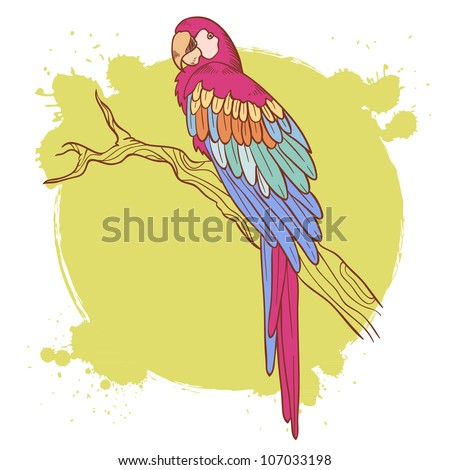Colorful hand drawn ara parrot sitting on a tree brunch isolated on a grunge background