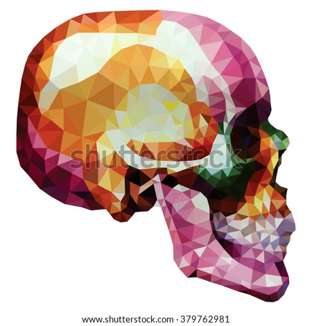 colorful human skull  low poly