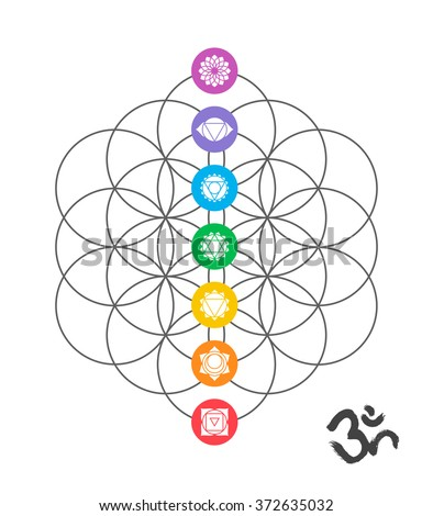 colorful icons  main chakras on