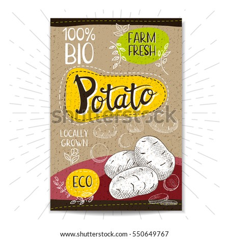 stock-vector-colorful-label-in-sketch-style-food-spices-cardboard-textured-background-potato-vegetables