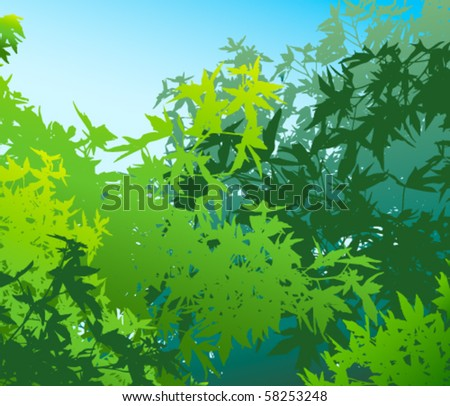 Colorful landscape of summer foliage - Vector illustration - The different graphics are on separate layers so they can easily be moved or edited individually