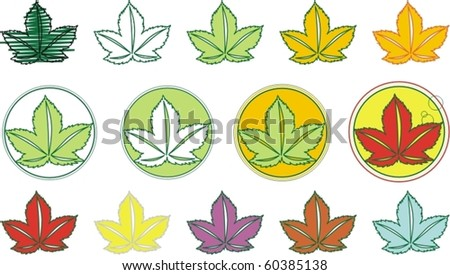 colorful leafs/leaves
