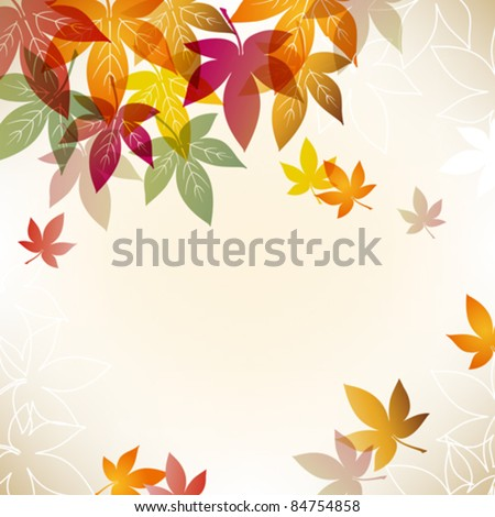 colorful maple background