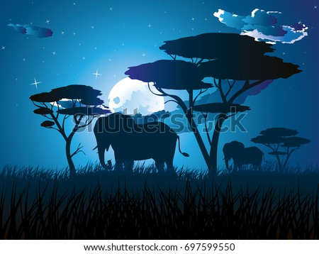 colorful night scene  african