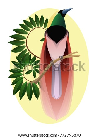 Colorful paradise bird on a branch, side profile. Exotic fauna.