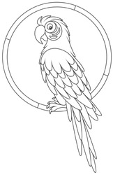 Colorful parrot macaw sitting on a ring, a black and white vector illustration in a cartoon style for a coloring book