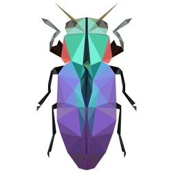 Colorful polygonal illustration of a violet bug, beetle, insect