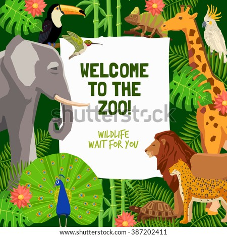 Colorful poster with tropical animals and invitation to visit zoo flat vector illustration