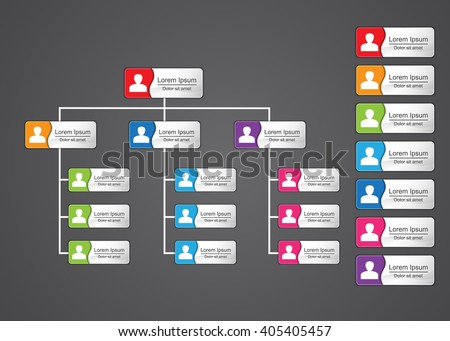 Colorful Rectangle Organization Chart Infographics with People Icon and Abstract Line, Business Structure, Vector Illustration.