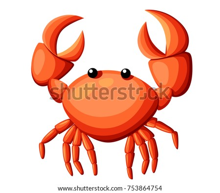 colorful red crab vector