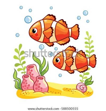 colorful sea fish reef fish