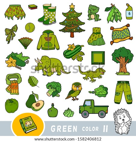 colorful set of green color