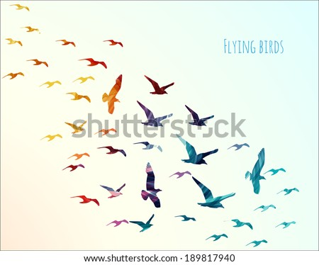 Colorful silhouettes of flying birds, vector illustration