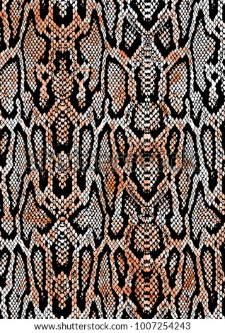 colorful snake print