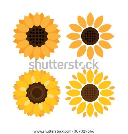 colorful sunflower vector icons