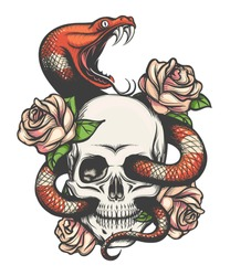 Colorful Tattoo design with skull, roses and snake. Vector illustration.