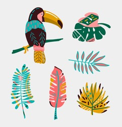 Colorful tropical bird with leaves.