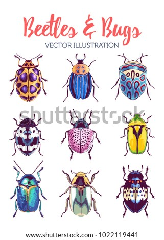 colorful tropical bugs and