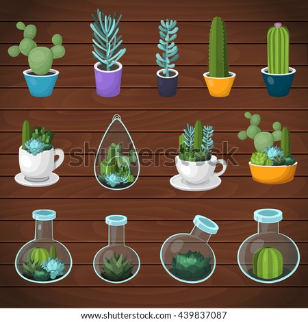 colorful vector cactus and