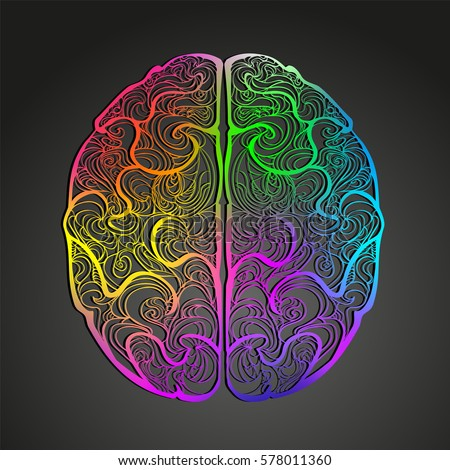 Colorful vector of human brain. Hand drawn doodle decorated with waves. A left and right hemispheres top view. Creativity concept