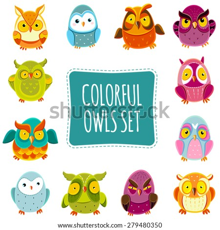 Colorful Vector Owls set. Vector Owls. Vector illustration