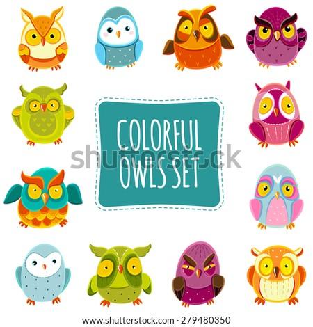 Colorful Vector Owls set. Vector Owls. Vector illustration