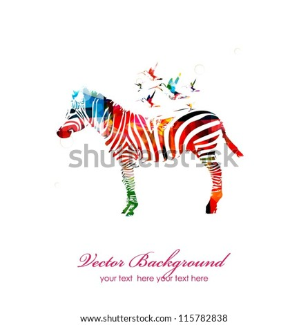 colorful vector zebra with