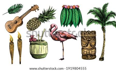 Colorful watercolor Hand drawn Hawaii sketch set. Hawaii theme. Ukullele, hawaii guitar, Hula Skirt, totem, tribal mask, hawaii bamboo torch, juice in coconut