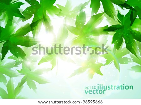 Colorful watercolor leaves. Environment leaf background, season poster eps10