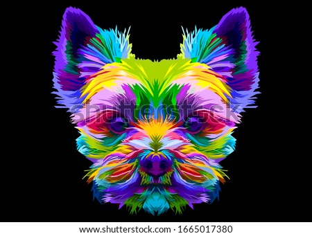colorful yorkshire terrier dog