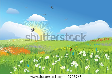 Colorfull meadow / flower and grass /  blue sky / vector