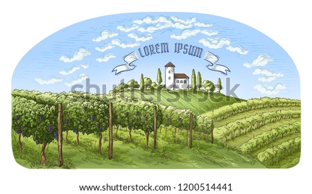 colorfull vine plantation hills, trees, clouds, and ancient castle on the horizon vector illustration