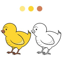 Coloring book (chicken)